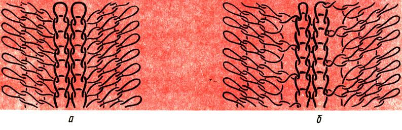 Рис. 87. Плотная (а) и ажурная (б) регланные линии